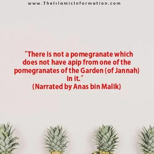 Sunnah about POMEGRANATES