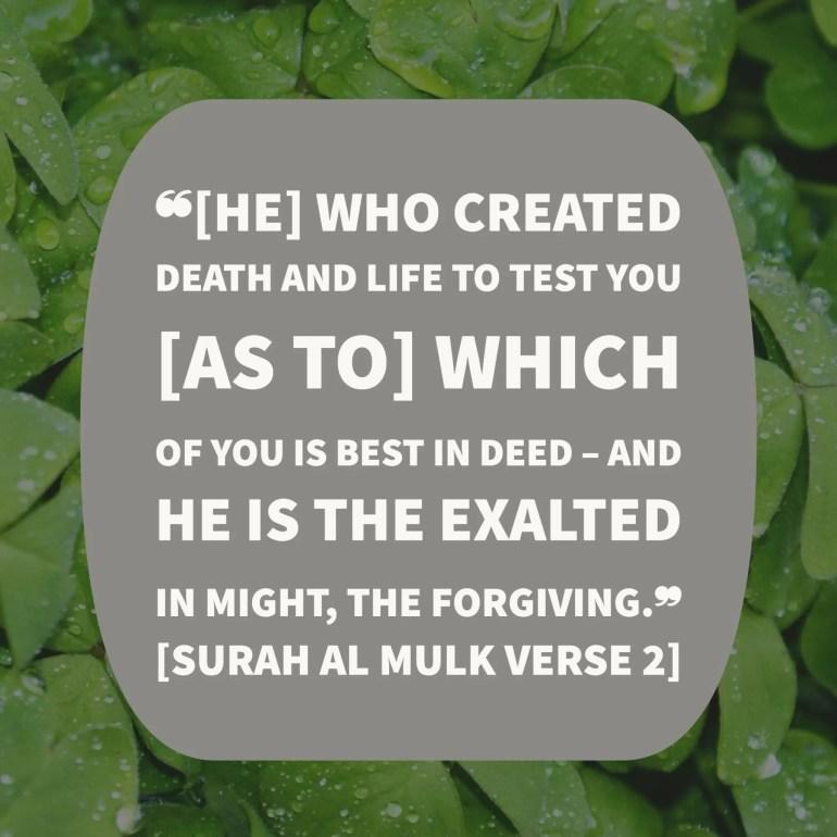 surah mulk verse 2 english translation