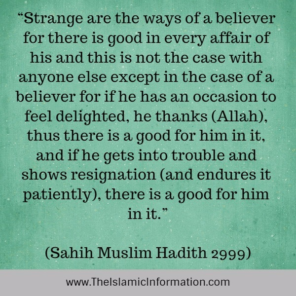 SEE GOODNESS IN EVERYTHING hadith
