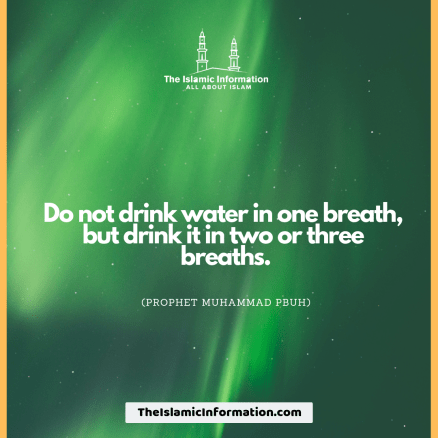 DRINKING WATER SUNNAH