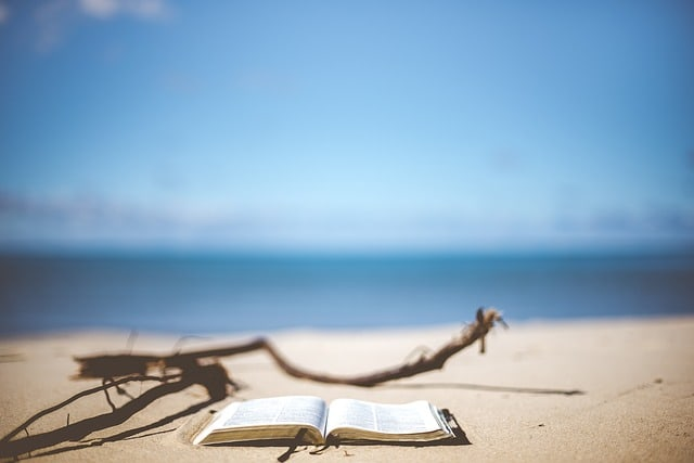beach-1866992_640