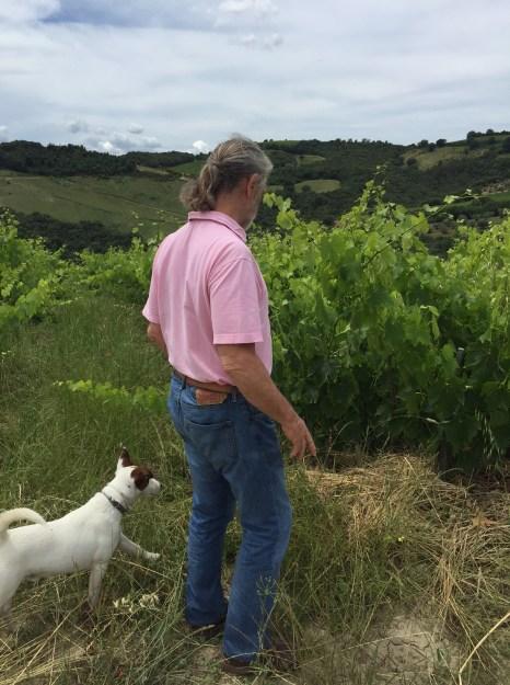 Francesco in the vineyards