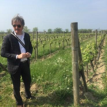 Alberto Zenato in the vineyards