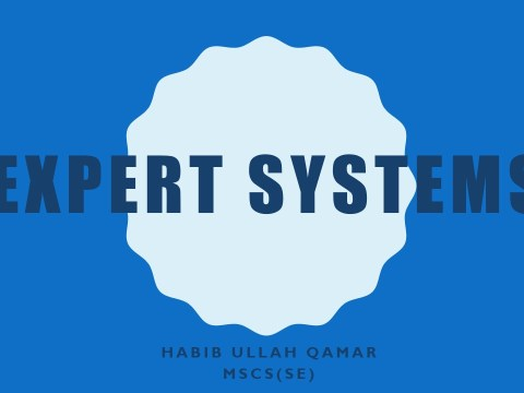 Expert-Systems.pdf