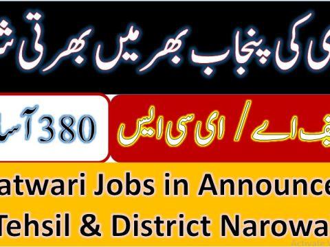 patwari Jobs in Tehsil and District Narowal