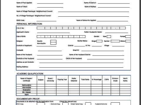 STI Jobs Application Form 2021