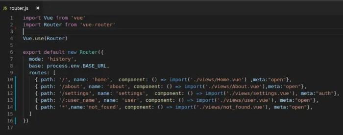 edit vuejs rouer file