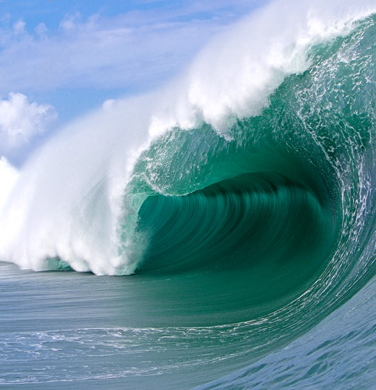 wave61