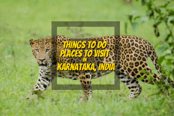 Top Things to Do and Places to Visit In Karnataka - http://thejerny.com