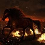 Dark Fantasy Horse The Jester S Corner