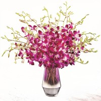 The-FTD-Pink-at-Heart-Orchid-Bouquet