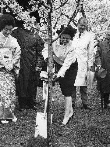 Primera Dama Helen Taft y la esposa del embajador de Japón Iwa Chinda