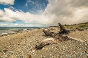 Beach along Highway, Punta Arenas