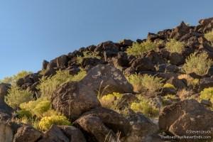 Petroglyphs, Piedras Marcasa Canyon Trail