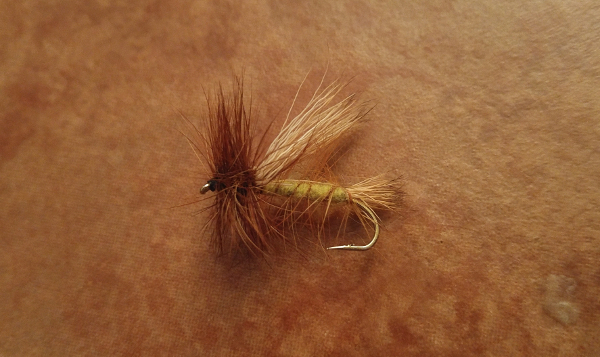sofa pillow stimulator dry fly golden stone fly fishing brook trout rainbow trout