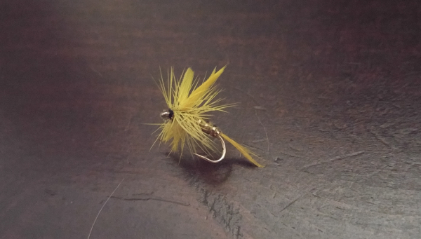 yellow stone fly yellow sally brook trout fishing mayfly