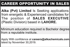 Alka Pvt Limited Jobs