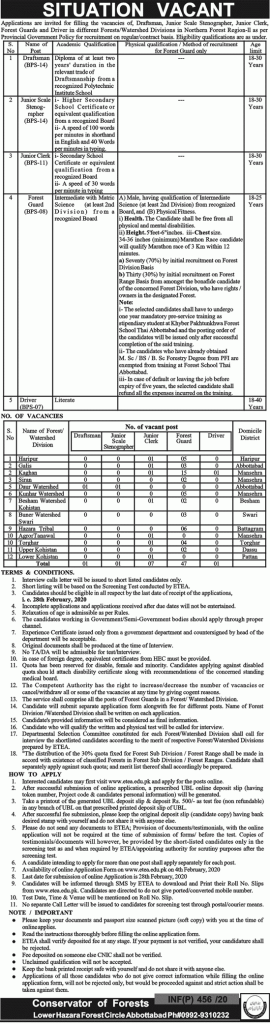Lower Hazara Forest Jobs 2020