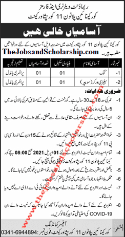 Pak Army Remount Veterinary Jobs 2021