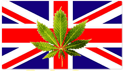 marijuana-england-uk