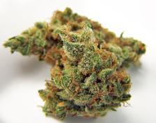 cannabis closet