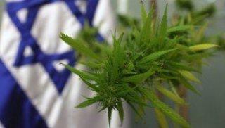 medical-marijuana-635x357