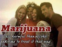 marijuanaissafer2