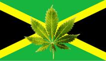 jamaicacannabis