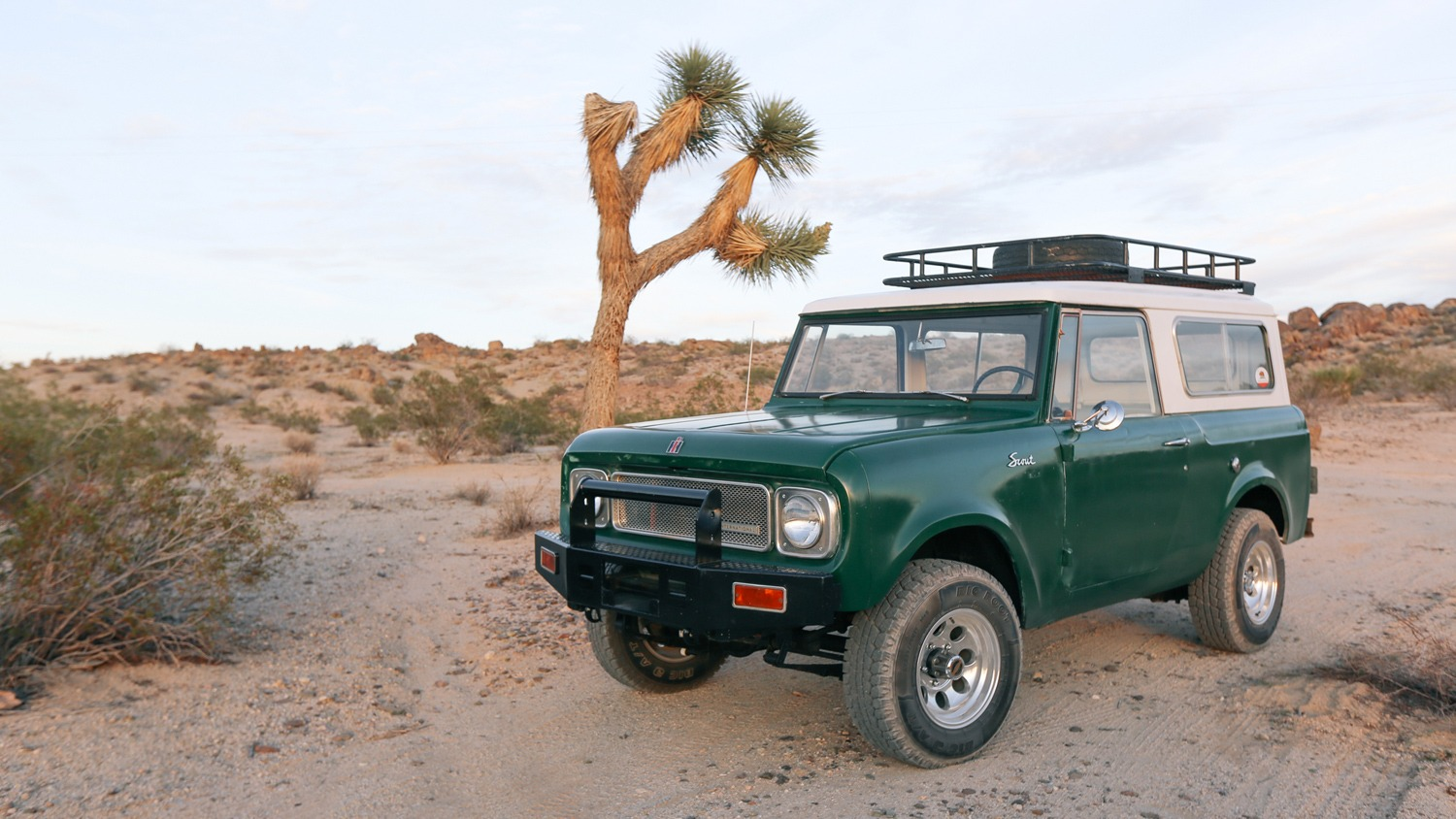 1969 International Harvester Scout 800A in Joshua Tree