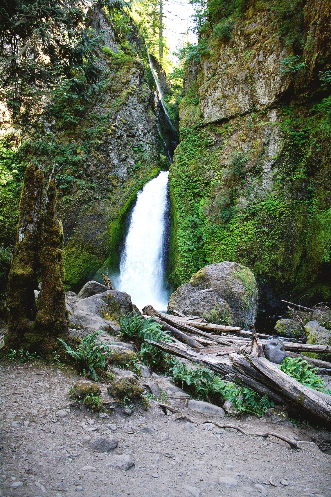 Wahclella Falls Columbia River Gorge easy hikes