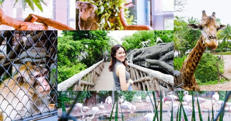 """เที่ยว """"เขาดิน"""" ก่อนย้าย ตำนานสวนสัตว์ใจกลางเมืองกรุงเทพฯ"""