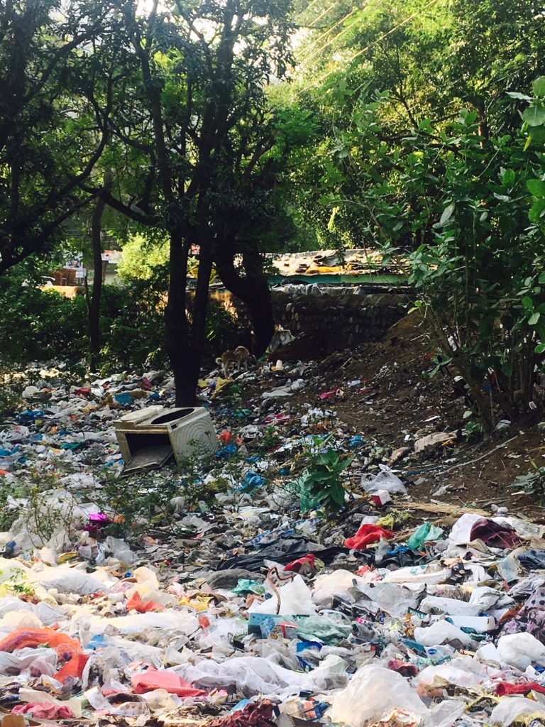 A vacant lot in Rishikesh full of garbage