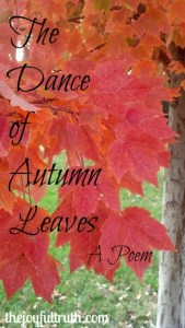Grateful for The Dance of Autumn Leaves