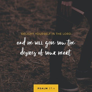 dailyverse youversion bible app