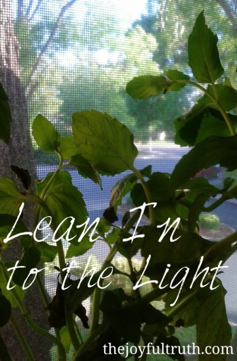 Lean In to the Light