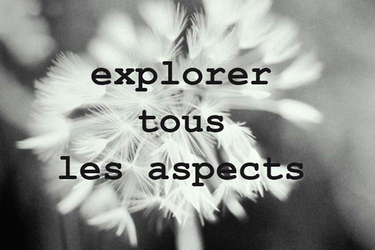 Explorer tous les aspects
