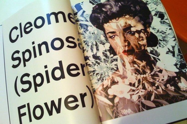 catalogue de Valerie Belin, conception Vanina Gallo