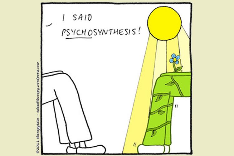 La psychosythèse illustrée