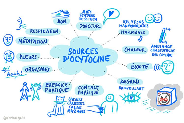 Sources d'ocytocine