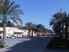 Bahrain - Paddock