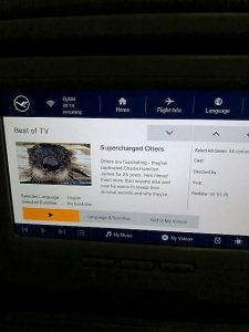 Airplane TV showing