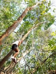 Tarzan Tasha?