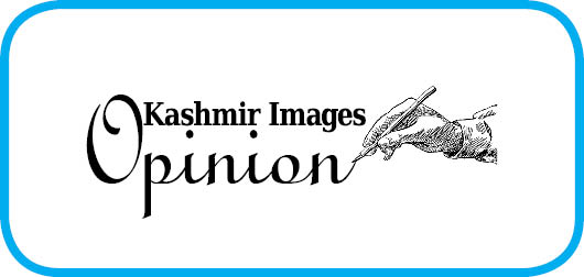 Kashmir Amidst the Pandemic: A Perspective