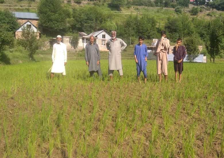 Farming activity wanes in Uri villages due to lack of irrigation