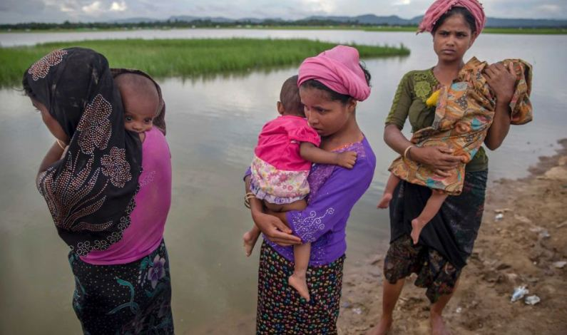 Surge in births among Rohingyas due to sexual violence:UN