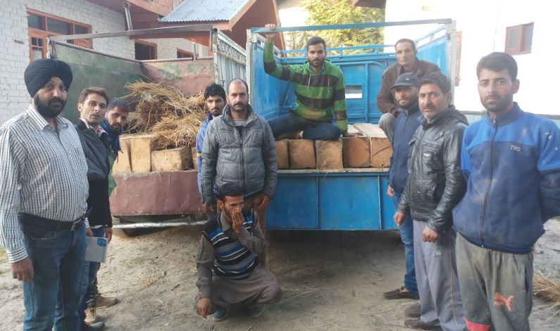 Two vehicles with illicit timber seized, drivers flee in Rafiabad