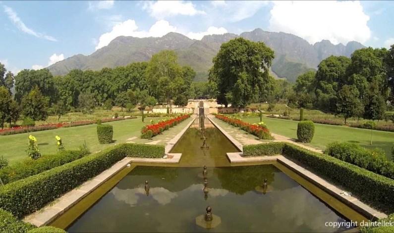 Mughal Gardens thrown open for public