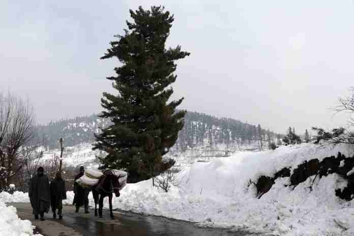 snowfall in kupwara, roads closed