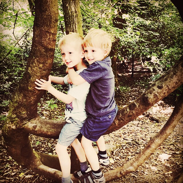 An English Mamma in Stockholm: instagram moments box hill brothers siblings tree
