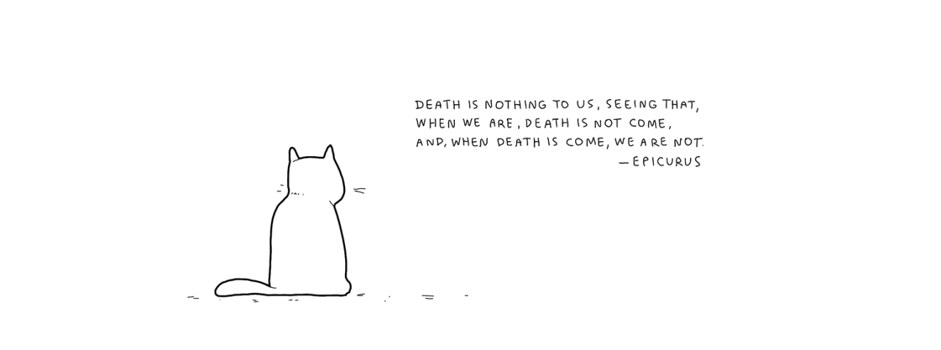 philosophical-cat-004